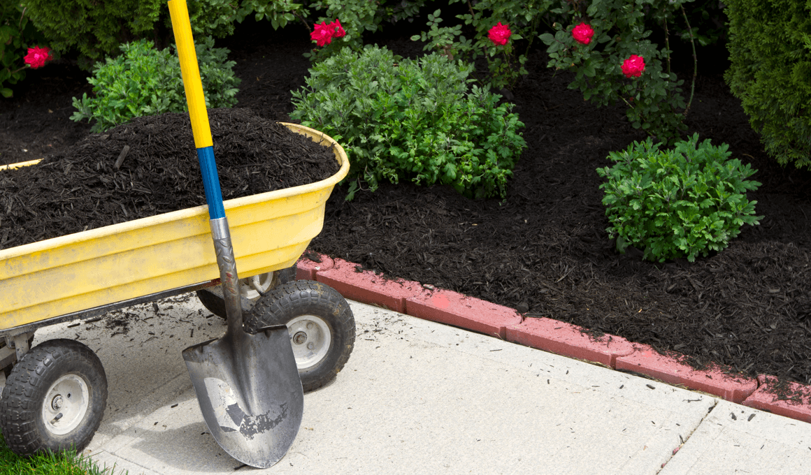 What You Need to Know About Landscaping When Buying a New Home Shovel Image